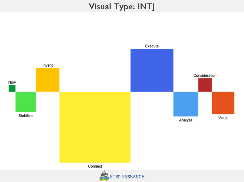 INTJ Visual Personality Type